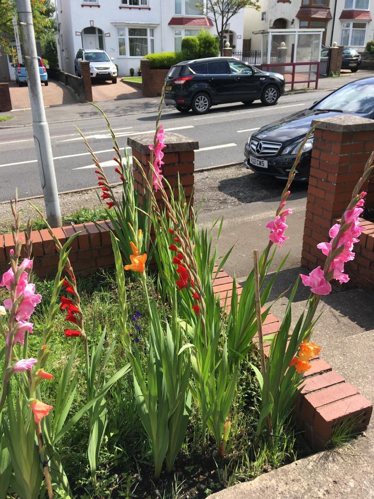 Cockett Road, Cockett, Swansea, SA2 0FG